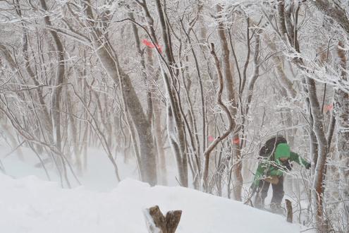 黒檜山 登山道