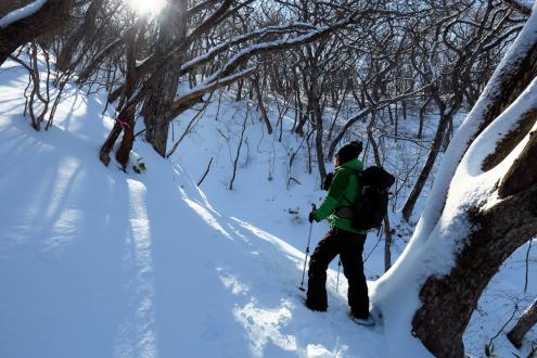 長七郎山の登山道