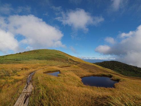 巻機山から牛ヶ岳に向かう稜線木道