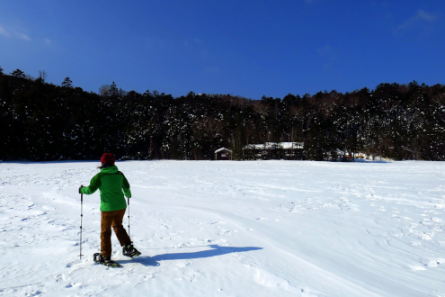 氷結した白駒池