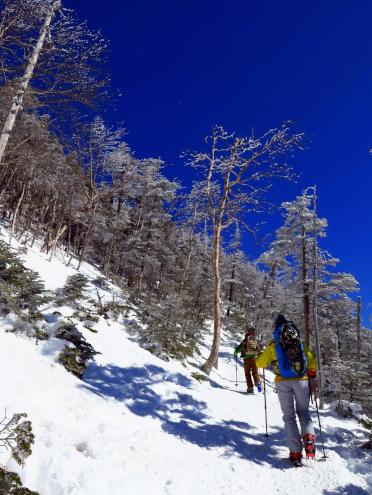 北横岳登山道